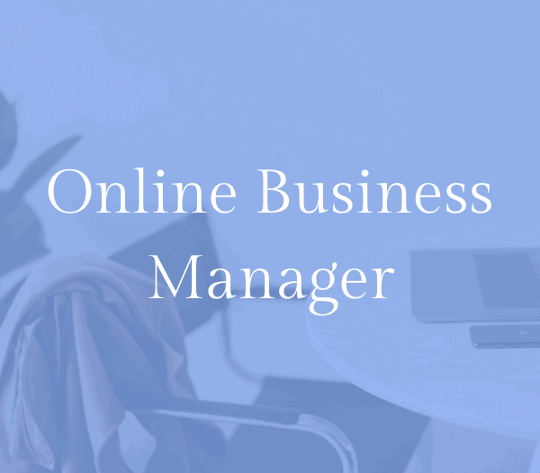 Online business manager as a digital business idea